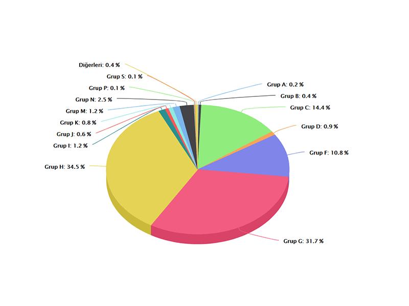 Grup H'nin Diğer Sektörlerden Satın Alımı