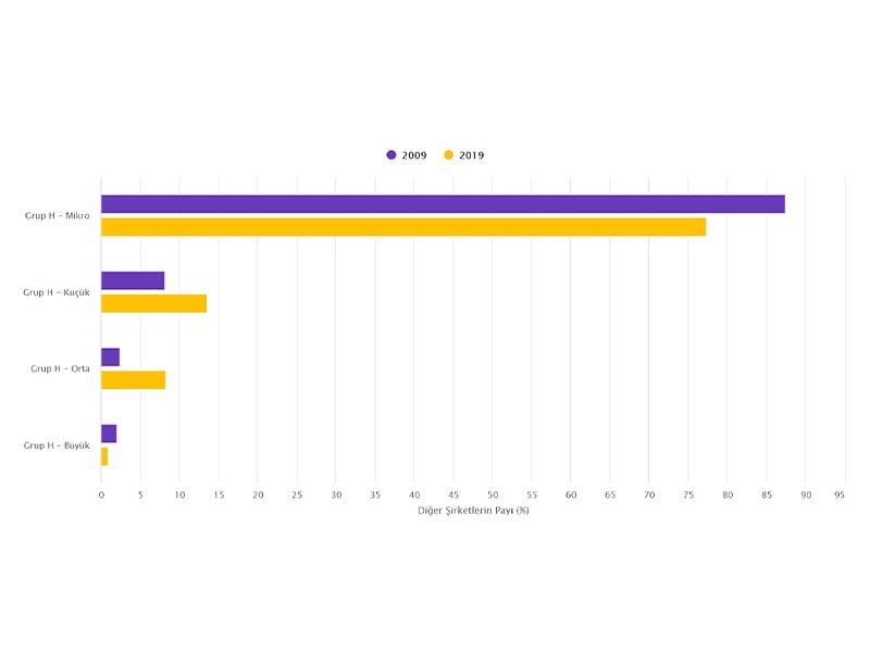 Grup H'de Büyüklüğüne Göre Diğer Şirket Türlerinin Sayısı