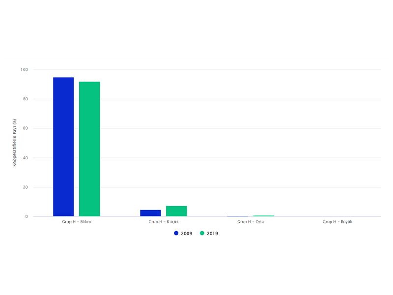Grup H'de Büyüklüğüne Göre Kooperatif Sayısı