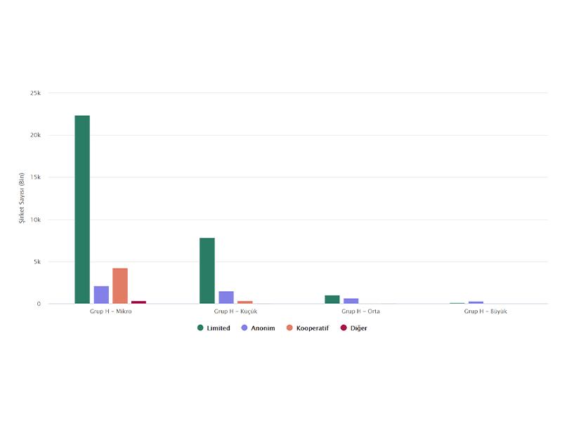Grup H'de Büyüklüğüne Göre Şirket Türlerinin Sayısı